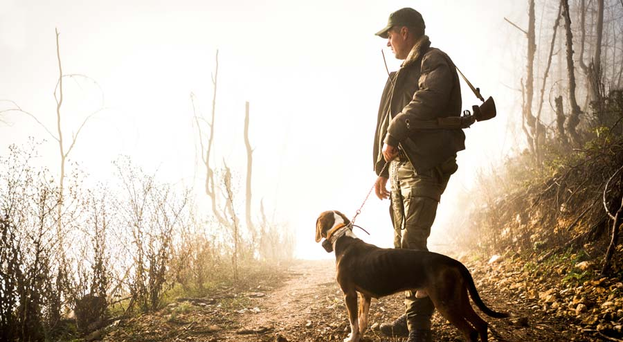 How to Find Good Public Hunting Land